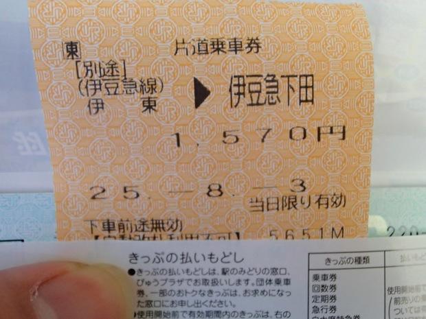 写真は伊豆急行線内の伊東〜伊豆急下田間のきっぷ